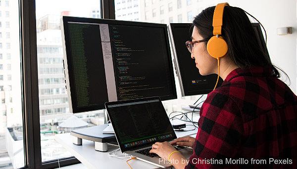 Technology & IT Employment